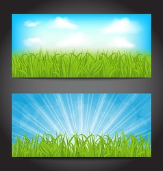 Set summer cards with grass natural backgrounds vector image vector image