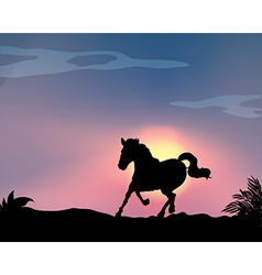 Silhouette horse vector