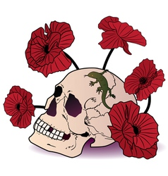 skull lizard and poppies vector image