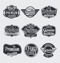 Retro vintage label Set vector image vector image