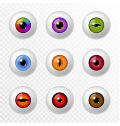 human and animal eye different color eyeball vector image