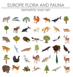 Isometric 3d european flora and fauna map vector