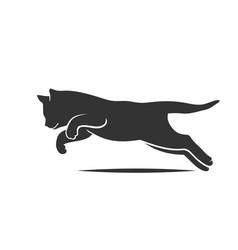 kitten jumping line sketch vector image
