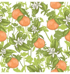 Seamless summer citrus floral pattern vector