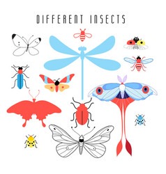 set different insects vector image