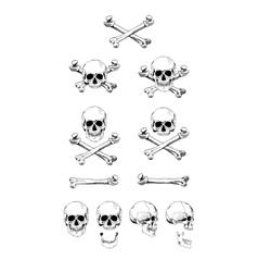 set of skulls black contour vector image