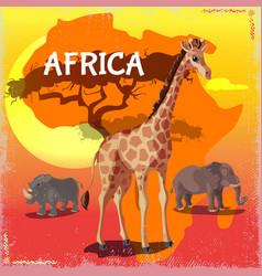 cartoon wild african animals concept vector image