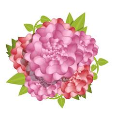 Camellia fresh flower concept background cartoon vector