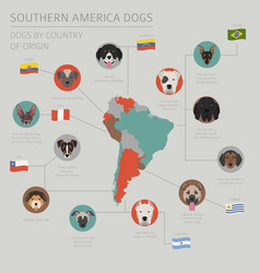 Dogs country origin latin american vector