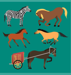 Horse pony stallion isolated different breeds vector