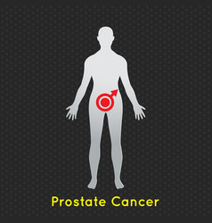 Prostate cancer icon vector
