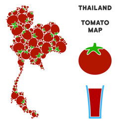 thailand map composition of tomato vector image
