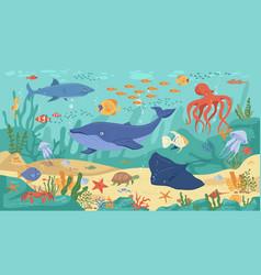 Underwater sea ocean animals corals and seaweeds vector