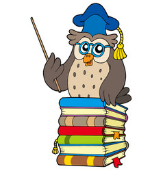 wise owl teacher on books vector image