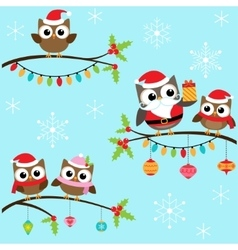 Christmas owls on branches vector image vector image