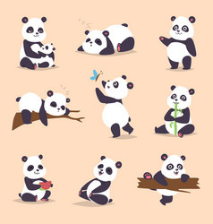 panda cartoon character in various expression vector image