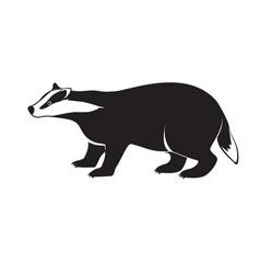 badger on short legs isolated on white background vector image