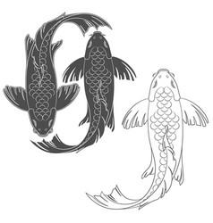 set of with a mirror koi carp vector image