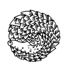 Cartoon armadillo animal sleeping vector