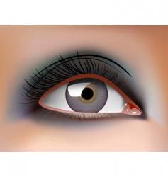 eye closeup vector image