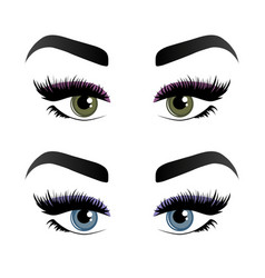 Two pairs womans eyes eyelashes and eyebrows vector