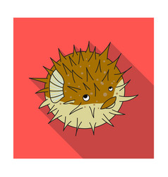 porcupine fish icon in flat style isolated on vector image vector image