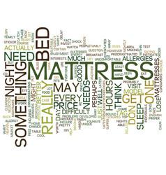 Mattress bliss or mattress nightmare text vector