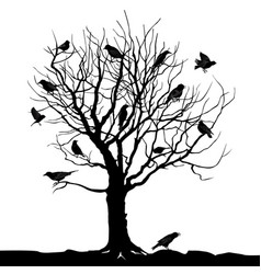 birds over tree forest landscape wild nature vector image