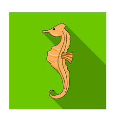 seahorse icon in flat style isolated on white vector image