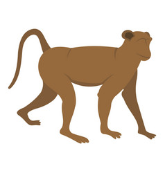 Brown monkey icon isolated vector