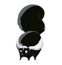 cartoon fat skunk vector image vector image