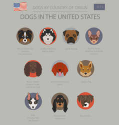 Dogs in the united states american dog breeds vector