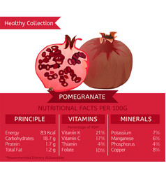 healthy collection pomegranate vector image