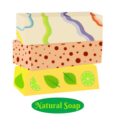 pieces of natural soap with herbs and fruits vector image