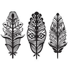 Set of ethnic tribal feathers vector