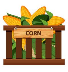 Sweet corn in wooden crate vector