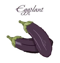 tasty veggies eggplant vector image