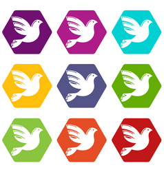 White peace pigeon icons set 9 vector