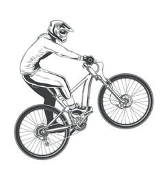 ride on a sports bicycle vector image