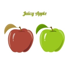 Set of juicy green and red apples isolated on a vector image