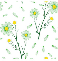 bouquet daisies seamless pattern white vector image