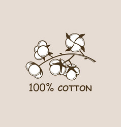 Cotton plant branch vector