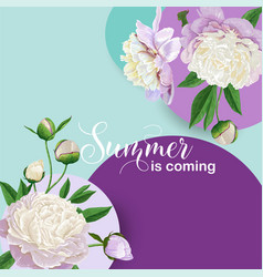 hello summer floral design blooming white peonies vector image