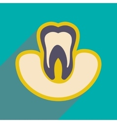 Icon of tooth gums in flat style vector