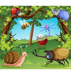 Many types of bugs in the forest vector