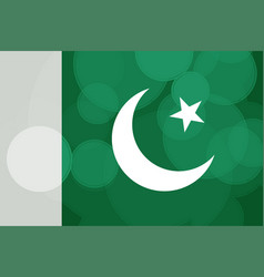 pakistan independence day vector image