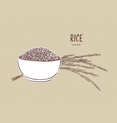 rice in bowl with rice branch hand draw sketch vector image