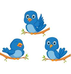 blue bird cartoon vector image