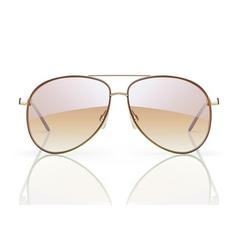 aviator sunglasses vector image vector image