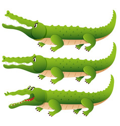 crocodile in three different actions vector image